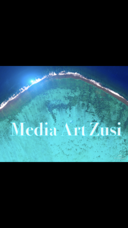 Media Art Zusi